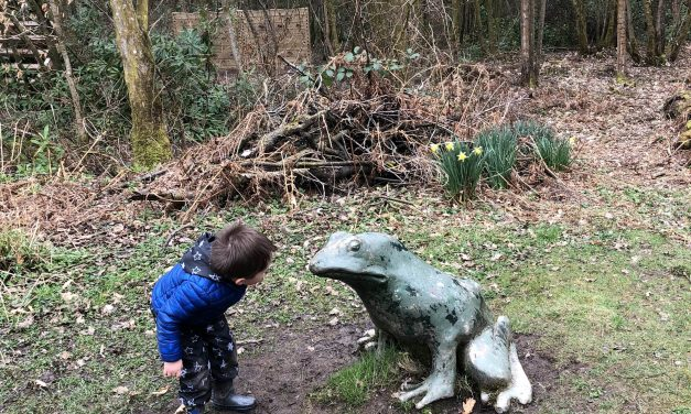 Plean Country Park – Family days out in Scotland