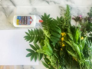 Kids Nature Name Craft Activity