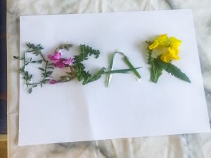 Kids Nature Name Activity